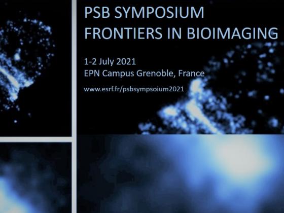 Frontiers in Bioimaging